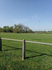 Terrain du rugby